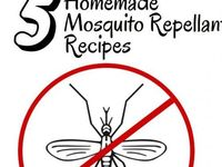 Willing to try anything to repel all kinds of bugs - especially Mosquitos!!