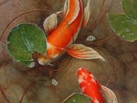 Koi Fish and Others