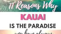 HAWAII | Travel guides / Amazing guides to the islands of Hawaii, budget and luxurious options. Best adventures, hikes, waterfalls, surfing and scuba diving. Inspiring places to visit Hawaii.