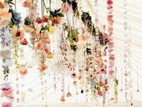 Hanging Decor & Garlands