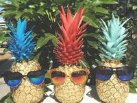 Pineapples • Thug Life Party Fruit / Pineapples • Thug Life Party Fruit...is a board about everything pineapples...because pineapples are awesome and tasty.