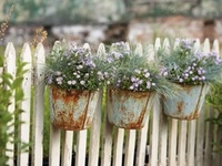 Decor - White Picket Fence