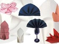 Napkin/Towel Folds