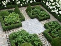 images about French Parterre Gardens on Pinterest
