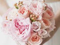 centerpiece and wedding ideas