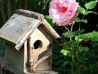 I LOVE rustic bird houses. I hope you enjoy my collection. Thank you to all the creative people out there who made such beautiful homes for our feathered friends.