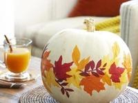 Seasonal: Thanksgiving & Fall