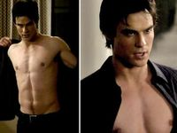 THE VAMPIRE DIARIES is the story of two vampire brothers who are obsessed with the same girl. I am TEAM DAMON all the way!!