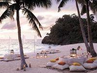 beach party / weddings /christmas