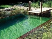A. Awesome swimming hole ideas....for me...