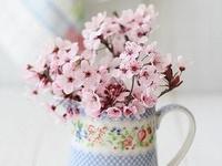 BlumenBuketts