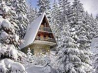 Favorite Mountain Homes....