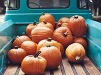 // I Love Autumn