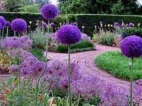 Gardening/Outdoor Living