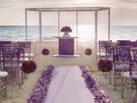 Ideas for our fall, purple wedding <3 Can't wait to marry my best friend!