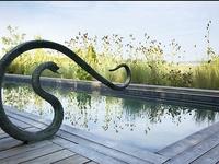Pool Love