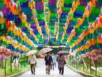 Umbrellas & Lanterns   ☂