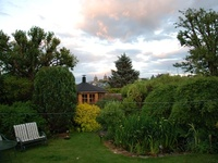 My Garden in Edinburgh