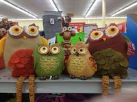 Everything Owls. For the Owl enthusiast.