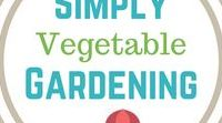 Simply Gardening / Gardening.  Growing your own food.  Simply.