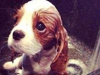 Cute. Precious. Adorable.