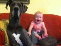 Cute kids or animals