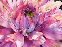 watercolor-florals