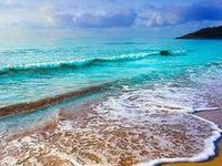 Sea The Ocean