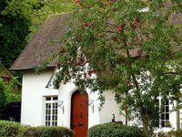 Storybook Cottages On Pinterest Fairytale Cottage English Cottages