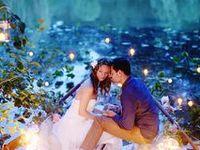 Wedding/ Event planner