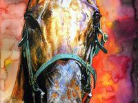 Art - About Horses