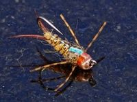 1000+ images about Fly Tying on Pinterest