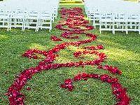 Events Ideas/Weddings/Baby