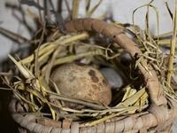 Primitive Easter