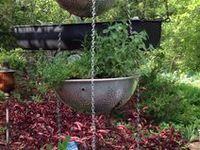 Outdoors/ Garden