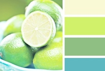 Coveted Color Palettes  / by Angela Barillas