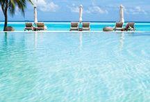 Tropic Adventures / Dream vacations