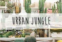 Urban Jungle ♥️ / Wir sind so verliebt in grüne Pflanzen und das Urban Jungle Thema. Am allerliebsten dekorieren wir mit Kakteen, weil die auch noch so stylisch aussehen.