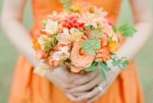 Orange Weddings / by Elizabeth Anne Designs