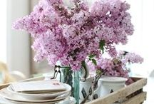 Spring / Bring the beauty of spring to your home! / by The Better Mom