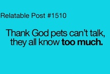 If Pets Could Talk