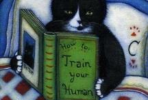 ~ Cat Tales ~