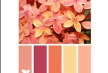 Color Combos / Especially appealing color combinations / by Kelli Peduzzi