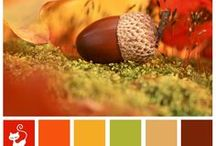 Color inspiration / by Rachel Gaines