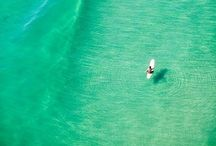 sea + surf