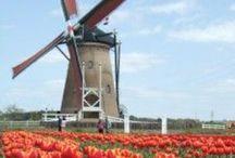 Dutch / by MimiCoco Poppy