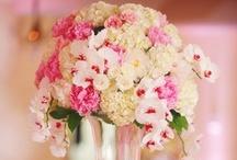 For my Brides... / by Dorie Vollmar