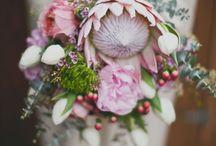 Floral / flowers & floral