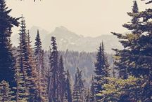 The Great Outdoors / mountains, lakes, oceans & forests