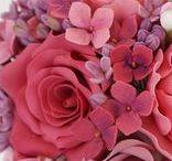 Gumpaste / Sugar flowers